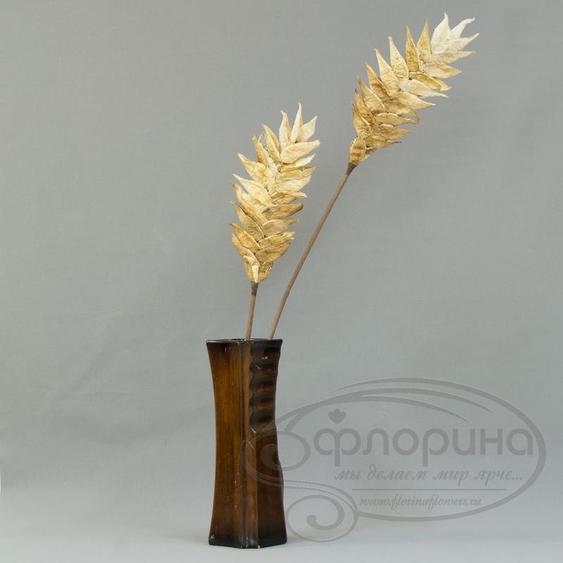 Где купить сухоцветы для флористики екатеринбург доставка цветов на дом по уфе