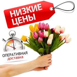 Доставка цветов купить комнатные цветы доставкой россии