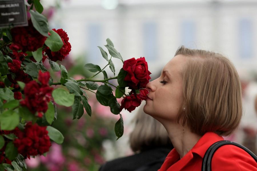 Цветы как люди